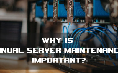 Why is annual server maintenance important?