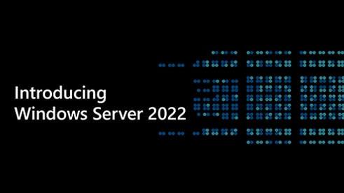 Microsoft Windows Server 2022 OS